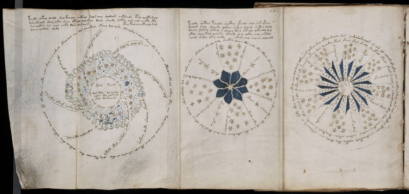 Voynich Manuscript-book