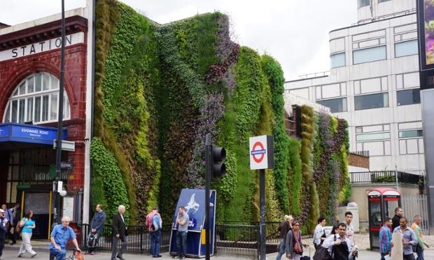 Water-producing billboard