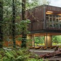 Western Red Cedar- McFarland Marceau Architects