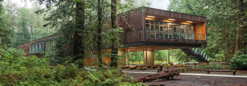 Western Red Cedar- McFarland Marceau Architects