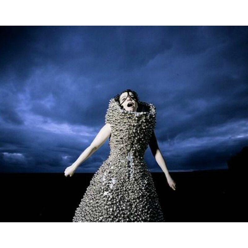 bjork auction 2016 - passion for fashion-