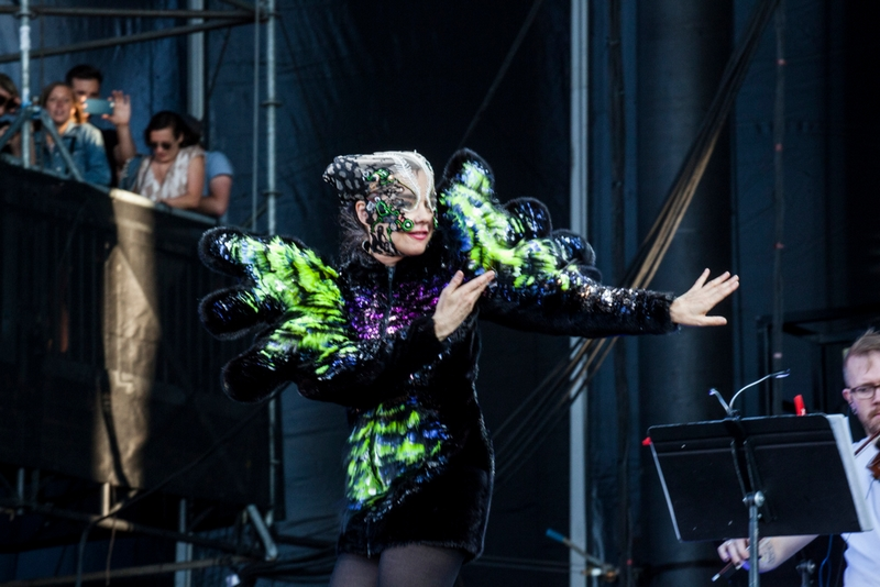 bjork outfits for auction