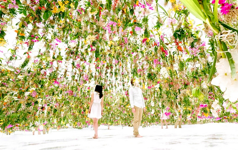 floating flower garden teamlab