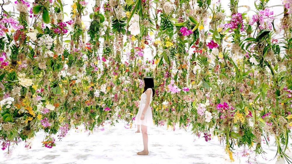 floating flower garden teamlab2015-