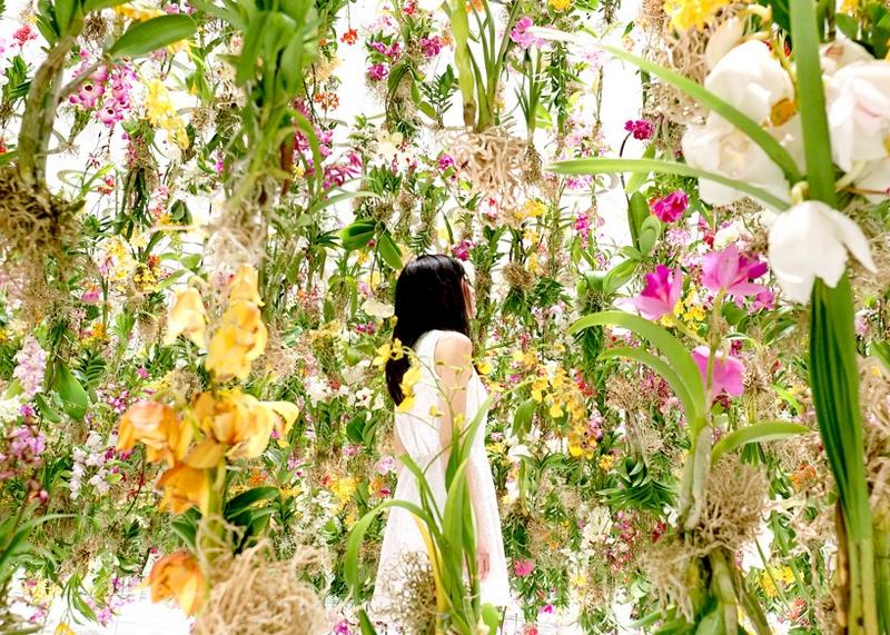 floating flower garden teamlab2015