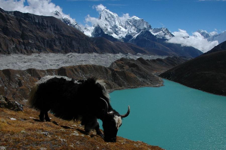 glacier lakes rivers himalaya