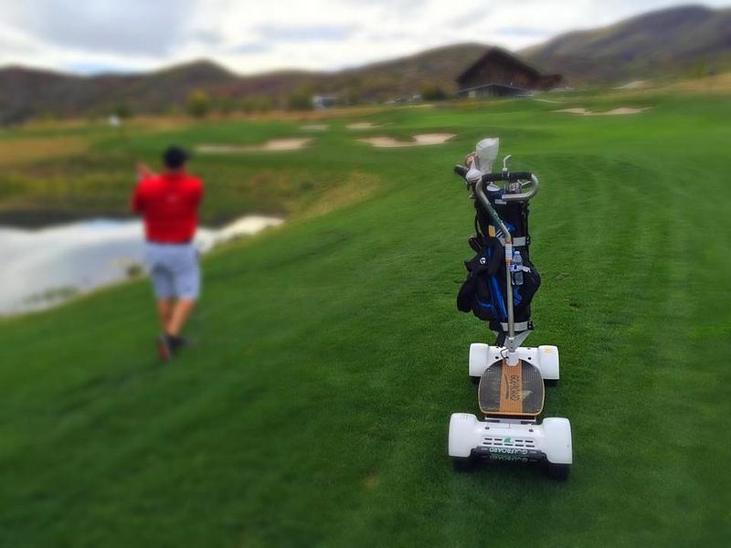 golfboard 2015 model--