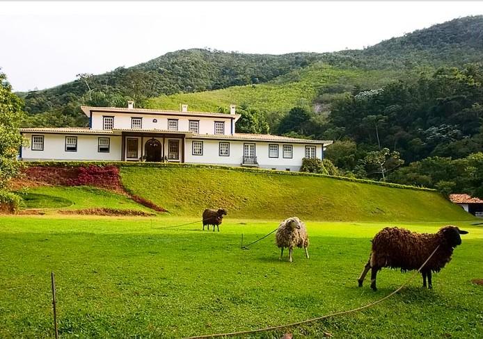 gourmet valley brazil