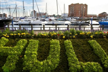 Hull: City of Culture 2017 review – prepare for a whale of a time