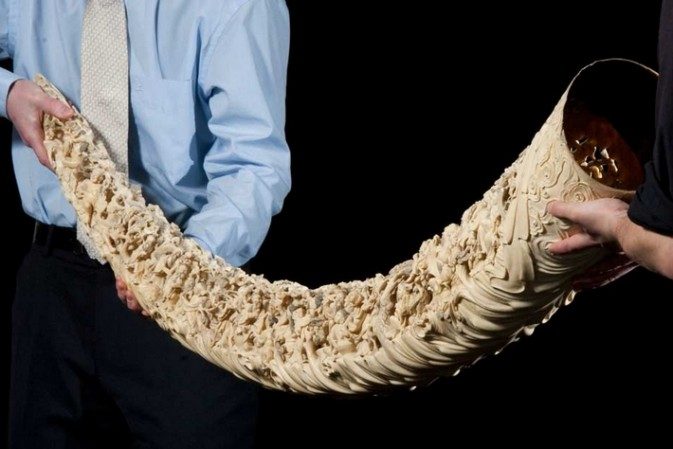Burning the ivory is just the beginning