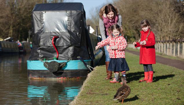 keep our ducks healthy - healthy food for ducks
