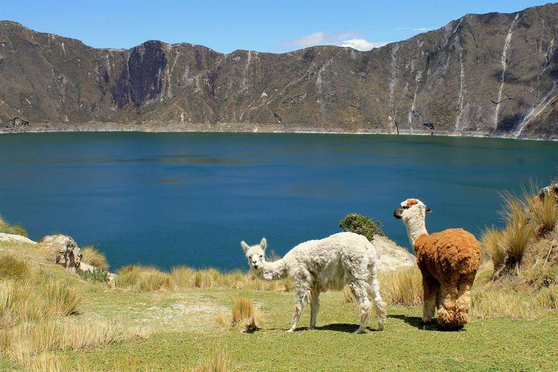 latin america adventure destinations