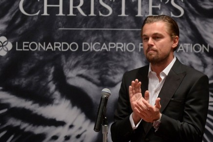 Leonardo DiCaprio Foundation raises $40m for environmental preservation