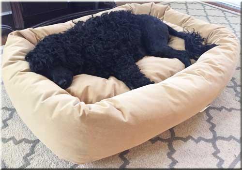 mammoth-dog-bed
