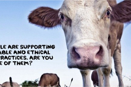 Is being vegan the most ethical way to live?