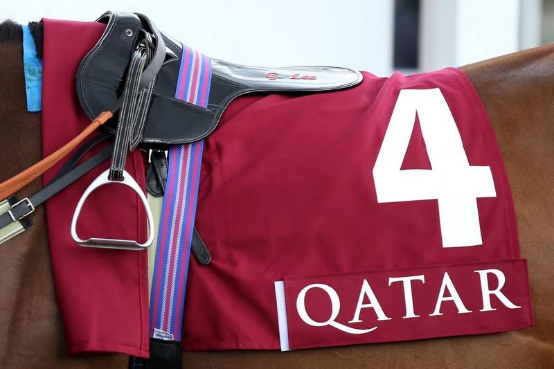 qatar race horse