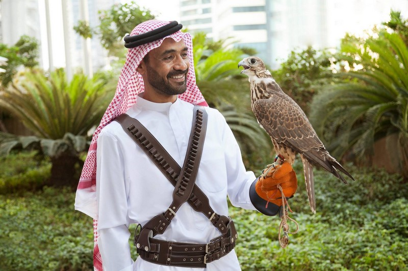 shangri-la doha - falcons