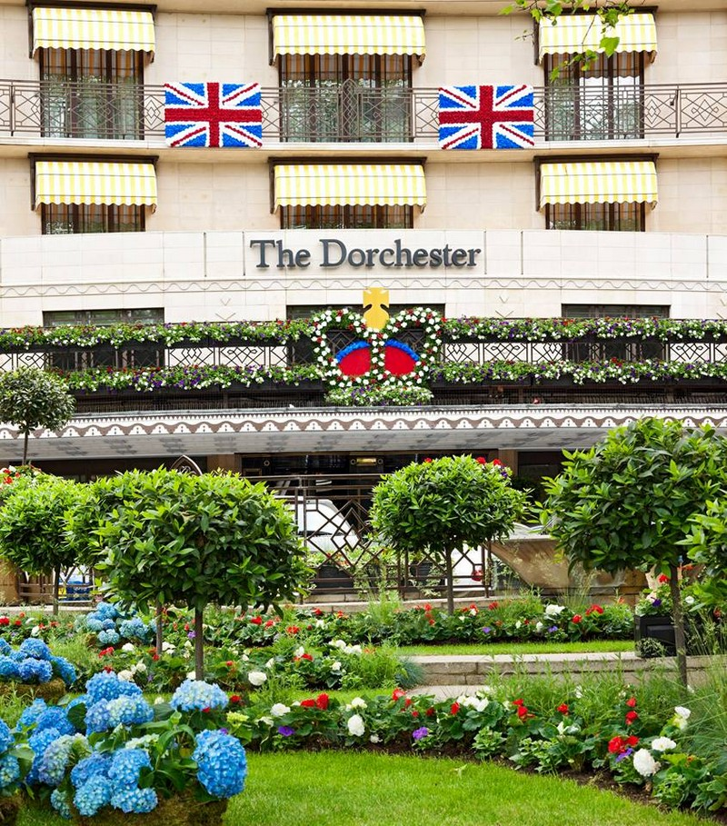 the dorchester flowers