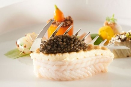 Nordic culinary supremacy. The winners of the 2012 Bocuse d'Or Europe