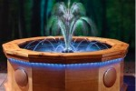 Musical Waters: Aquatic choreography for your garden