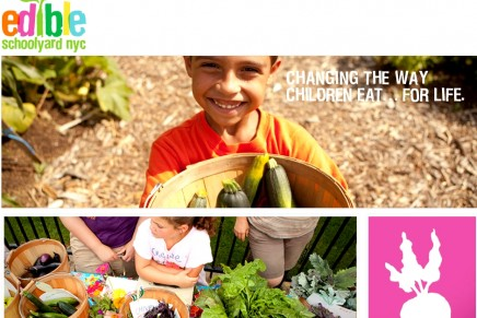 Mandarin Oriental New York launches Edible Schoolyard Picnics with celebrated chef Alice Waters