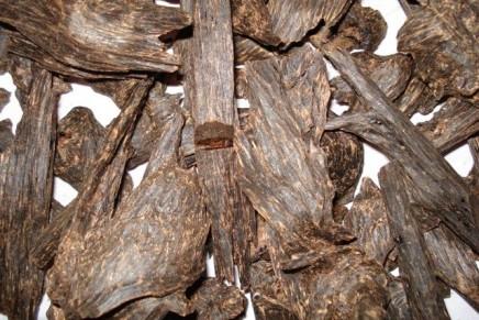 What you did not know about Oud