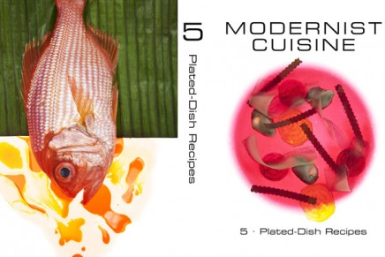 Modernist Cuisine' was named Cookbook of the Year at the James Beard Foundation Awards