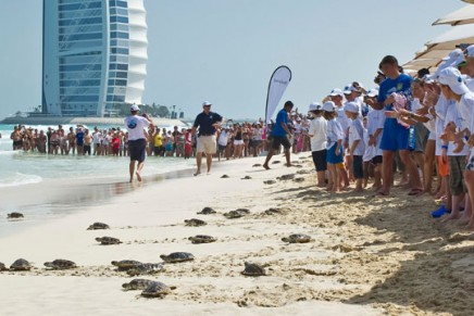 The Great Jumeirah Turtle Release