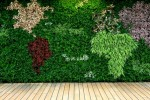 The world's first self-contained, free-standing living wall at sea
