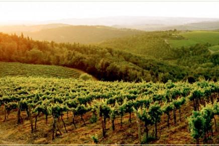 Best Wine Destinations 2012