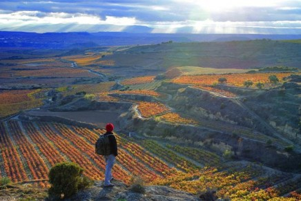 Wine traveler's itinerary for 2013: Top 10 wine destinations