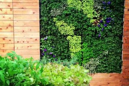 Green infrastructure: fresh herb vertical gardens