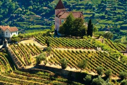 """Vineyards by Christie's"" to offer consultative service for those looking to acquire vineyards"
