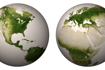 How much of the earth is covered in living plants?