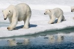 Let's not turn the Arctic into an adventure playground