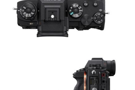 Alpha 1 – The most technologically advanced camera that Sony has ever released