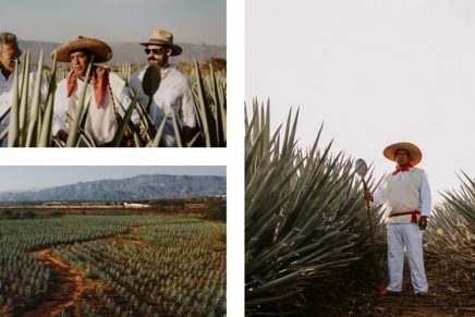 Whiskey or tequila? Why not both? Latest premium tequila launches for discerning agave spirit aficionados