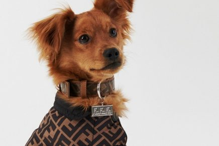 Plush pet goods: This Italian fashion house wants your dog to travel in style