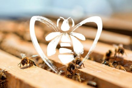 Luxury perfume house aims to raise up to one million euros to help protect bees