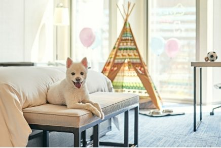 This new hotel package for pets is sure to set tails wagging