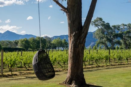 Cloudy Bay, New Zealand's most recognized winery is recreating their majestic home of New Zealand in London