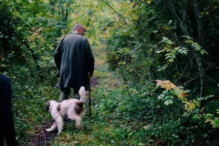 The Truffle Hunting Experience with our own truffle concierge