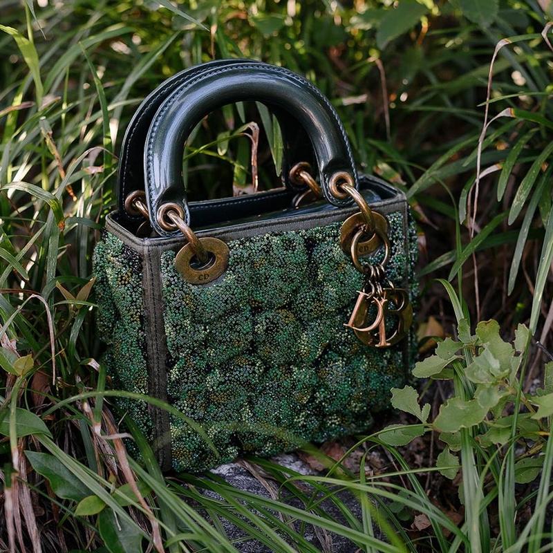 3rd Dior Lady Art bags 9