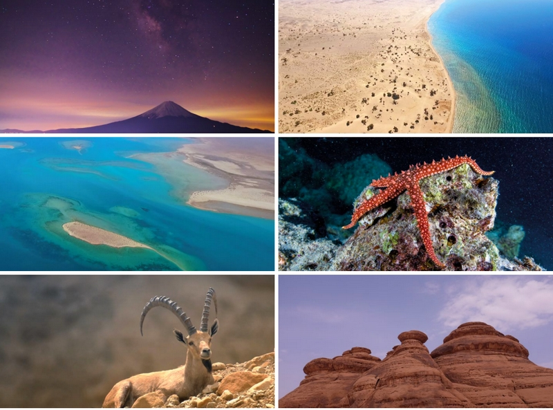 A new Vision for Saudi Arabia - Red Sea Project Brochure - Location and Resources