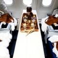 Air Canada - Fairmont Apres in The Air - Canada 150-800