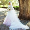 Anne-Hathaway wedding dress