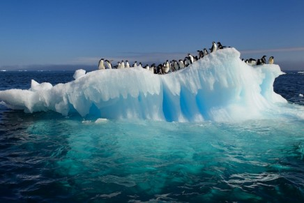 Antarctic ice shelves are melting dramatically, study finds