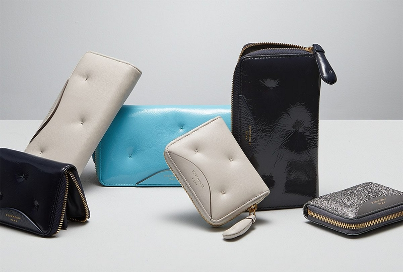 Anya Hindmarch chubby collection -