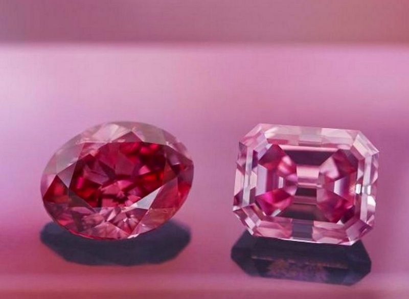 Argyle Alpha, the largest Vivid Pink diamond in the history of its Argyle Pink Tender