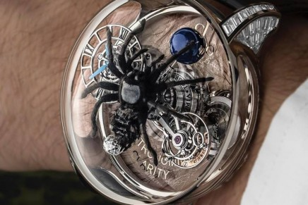 In the deadly embrace of a Tarantula: The Astronomia Clarity Spider